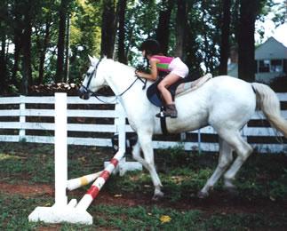 Horse Farm Carriage Hill